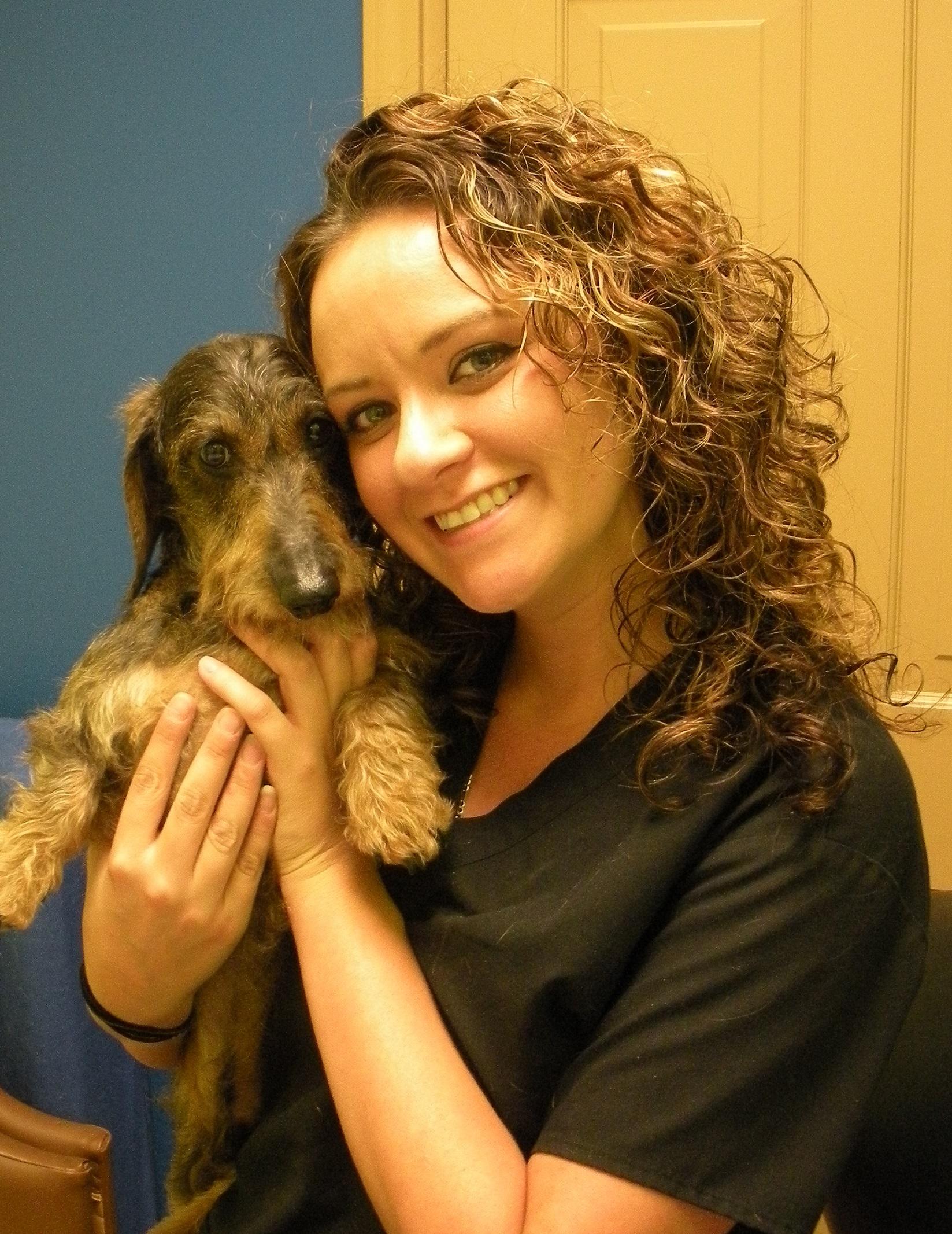 Ellwood Animal Hospital - Veterinarian in Ellwood City, PA